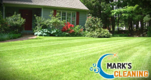 lawn-mowing-services-balham