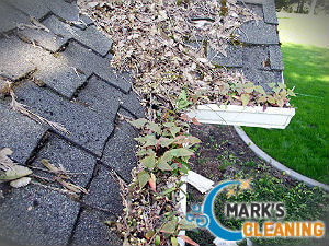 cleaning-gutter-balham